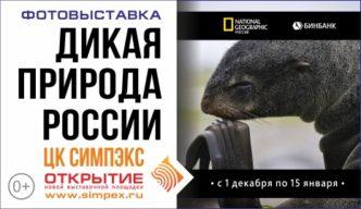 Выставка «Дикая природа России» от журнала «National Geographic Россия» открылась в новом ЦК «Симпэкс»